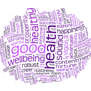 Embrace Wellbeing Ecosystem