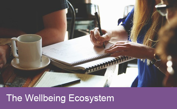The Wellbeing Ecosystem
