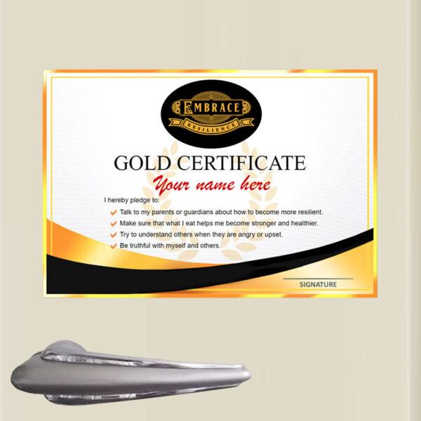 Gold Certificate Fridge Magnet